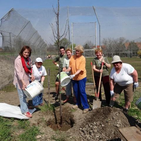 Zöldövezet díj 2014: Szentistvántelepi Cserkész Alapítvány