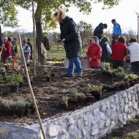 Zöldövezet díj  2011: Vértesboglár Község Önkéntes Tűzoltó Egyesület